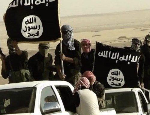 USA esortano gli Stati europei a rimpatriare i propri foreign fighters